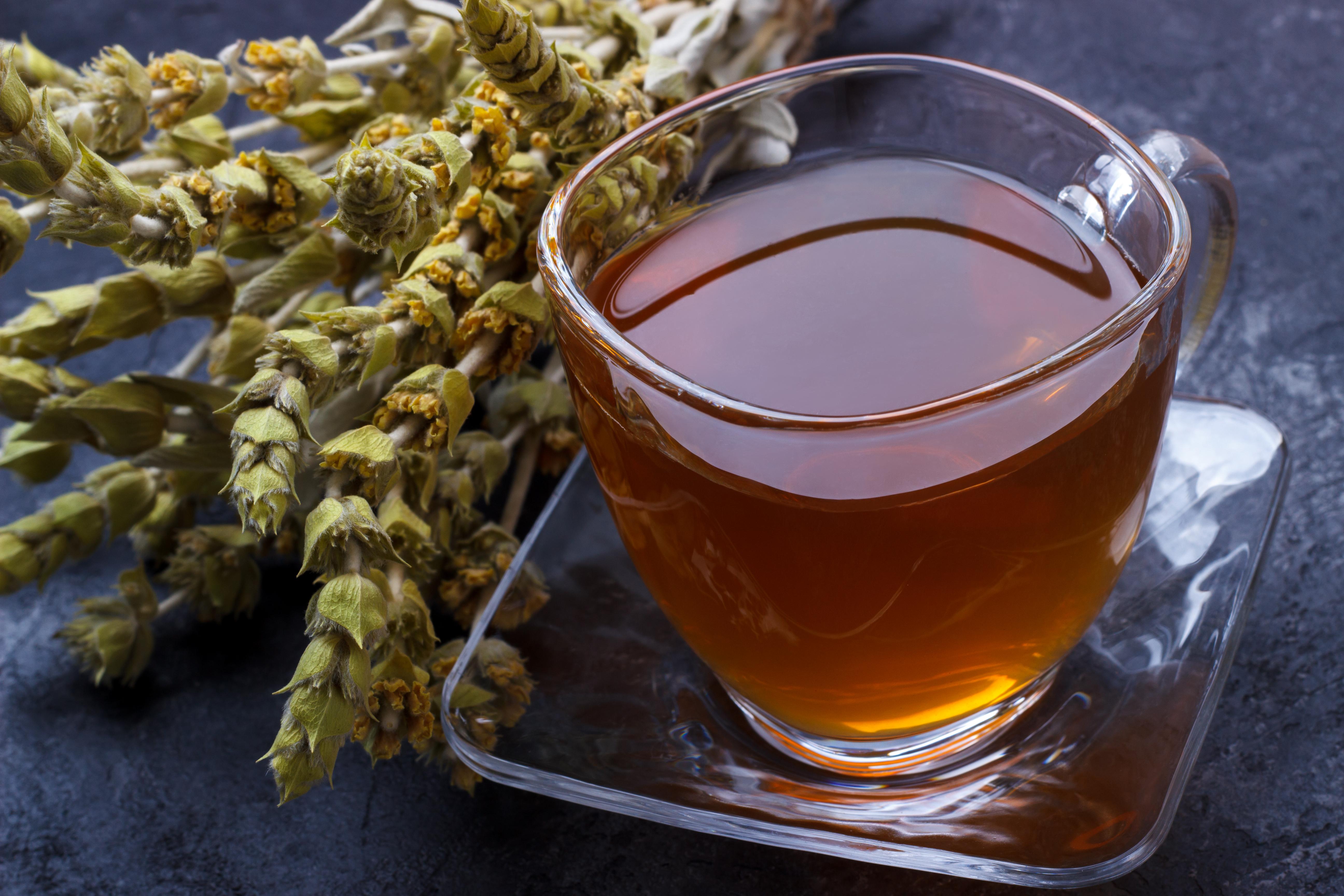 Mountain tea or Sideritis
