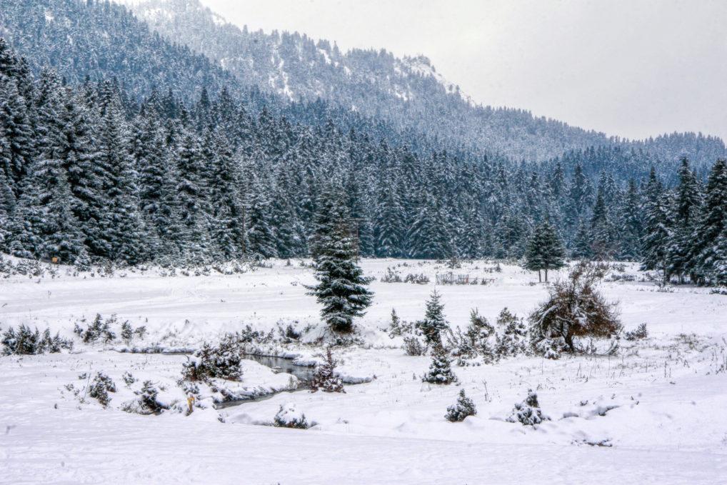 Le village de Pertouli près de Trikala pendant l'hiver et sa neige